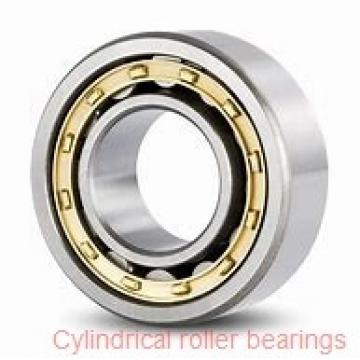 95 mm x 170 mm x 43 mm  NKE NU2219-E-M6 cylindrical roller bearings