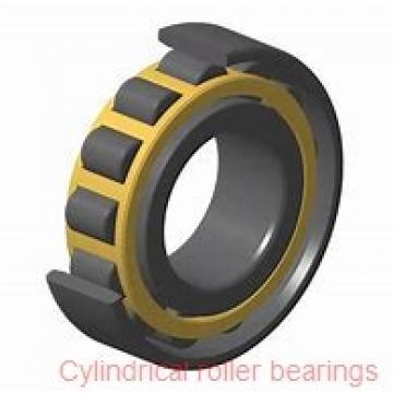 50 mm x 80 mm x 40 mm  KOYO DC5010N cylindrical roller bearings