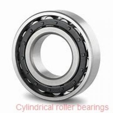 25,000 mm x 62,000 mm x 24,000 mm  NTN NF2305E cylindrical roller bearings