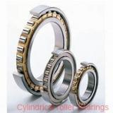 Toyana NF2320 E cylindrical roller bearings